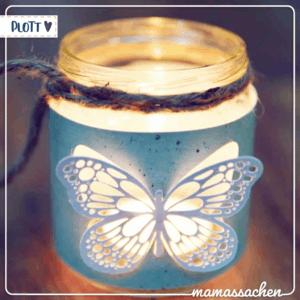 mamassachen Schmetterlinge